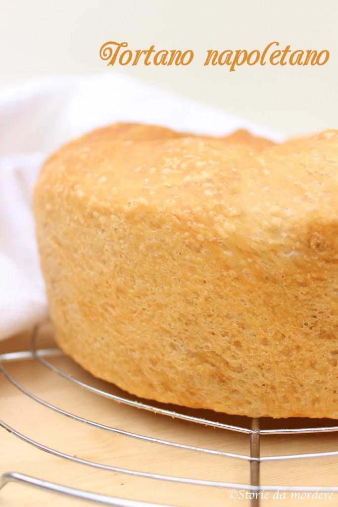 tortano 1